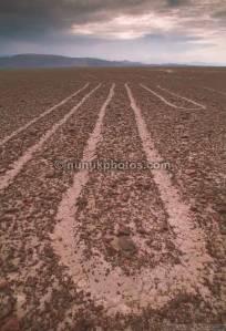 nazca-lines-3