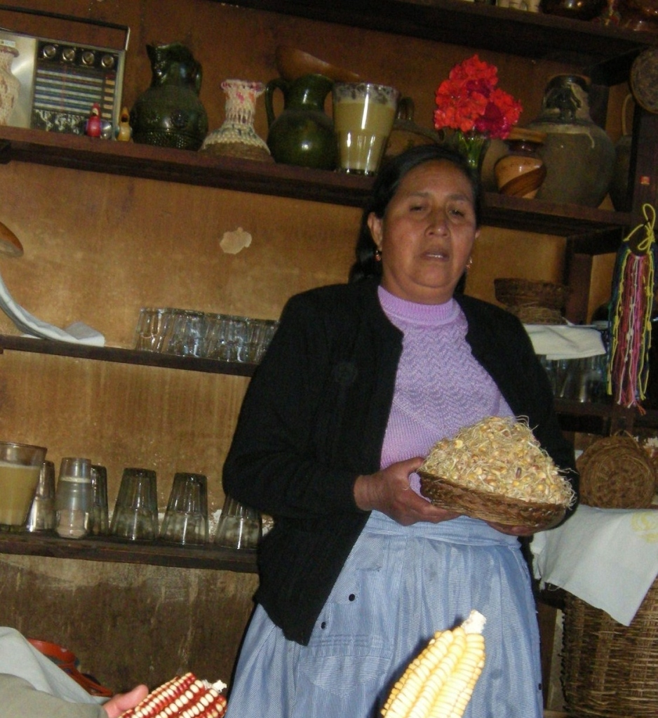 Owner of tavern El Portal del Valle describes how chicha is extracted from corn and fermented.