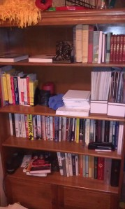 One of my several bookshelves