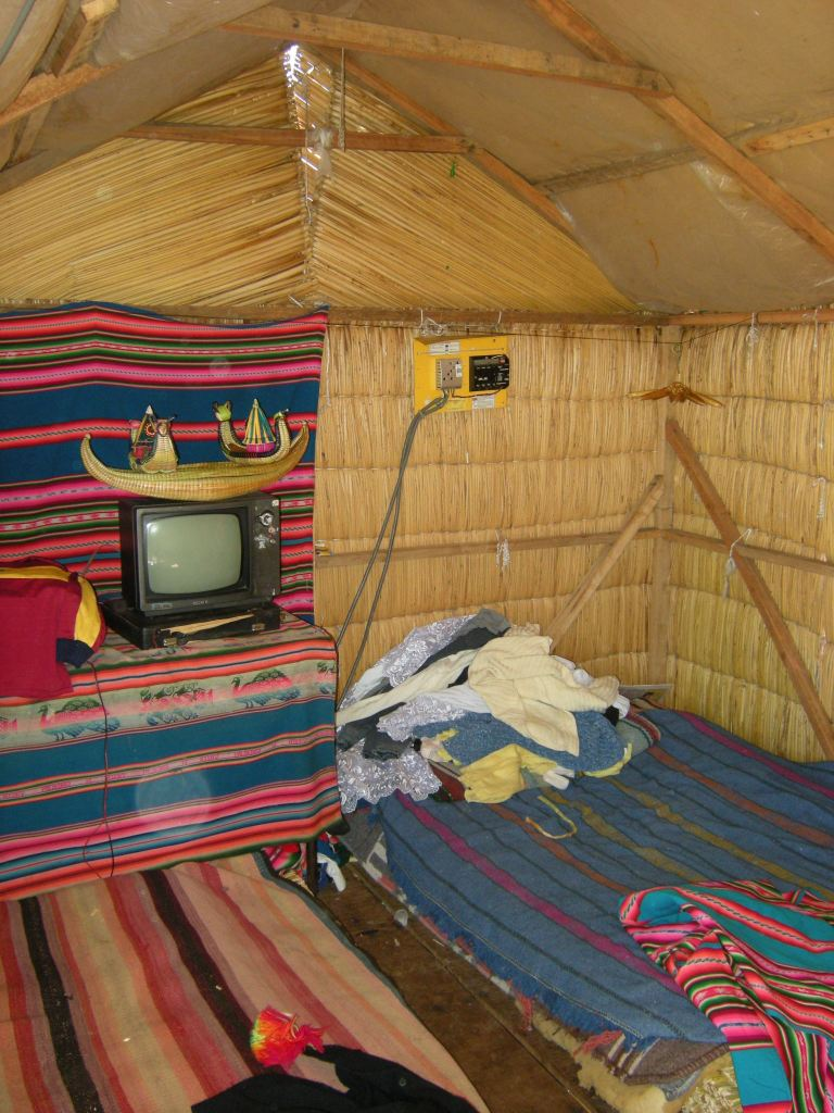 Electrified home: The small TV is powered by an electric cable connected to their energy source - the solar panel seen in another picture.