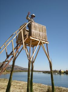 Surprisingly, Dale climbed up into the tower - he's afraid of heights!
