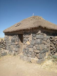 Thatched farm building