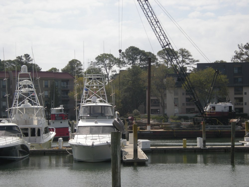 yachts in Harbour Town, Hilton Head Island