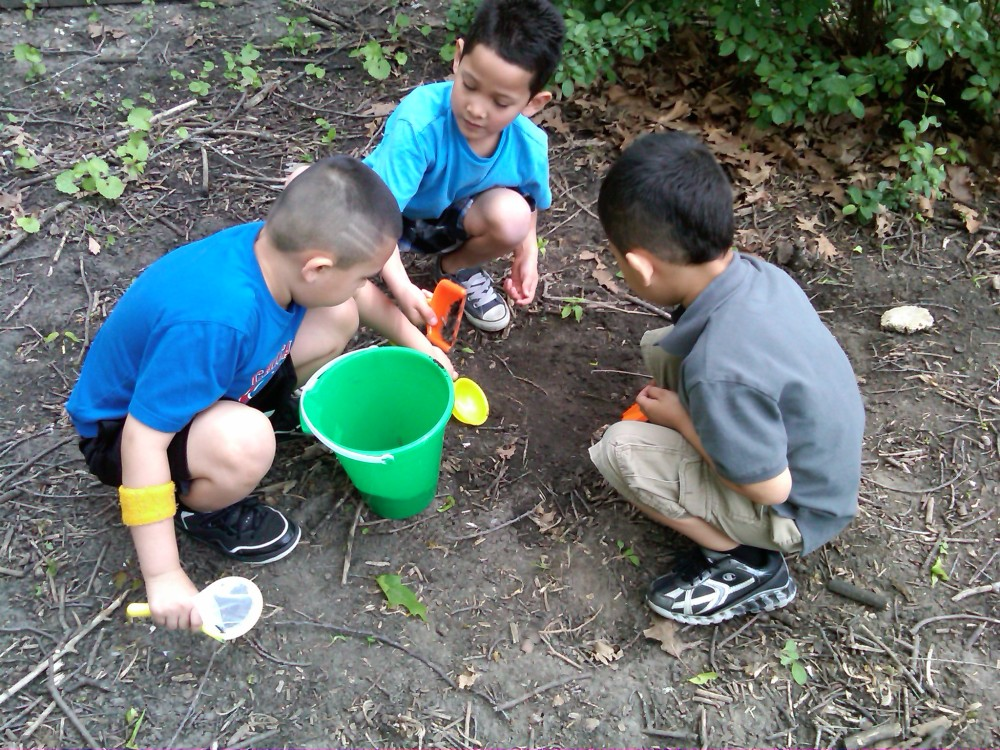 Bug day - boys comparing what they've found!