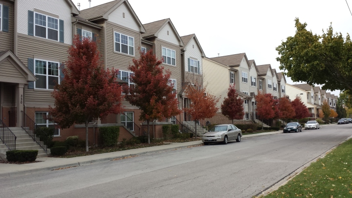 Townhomes and trees