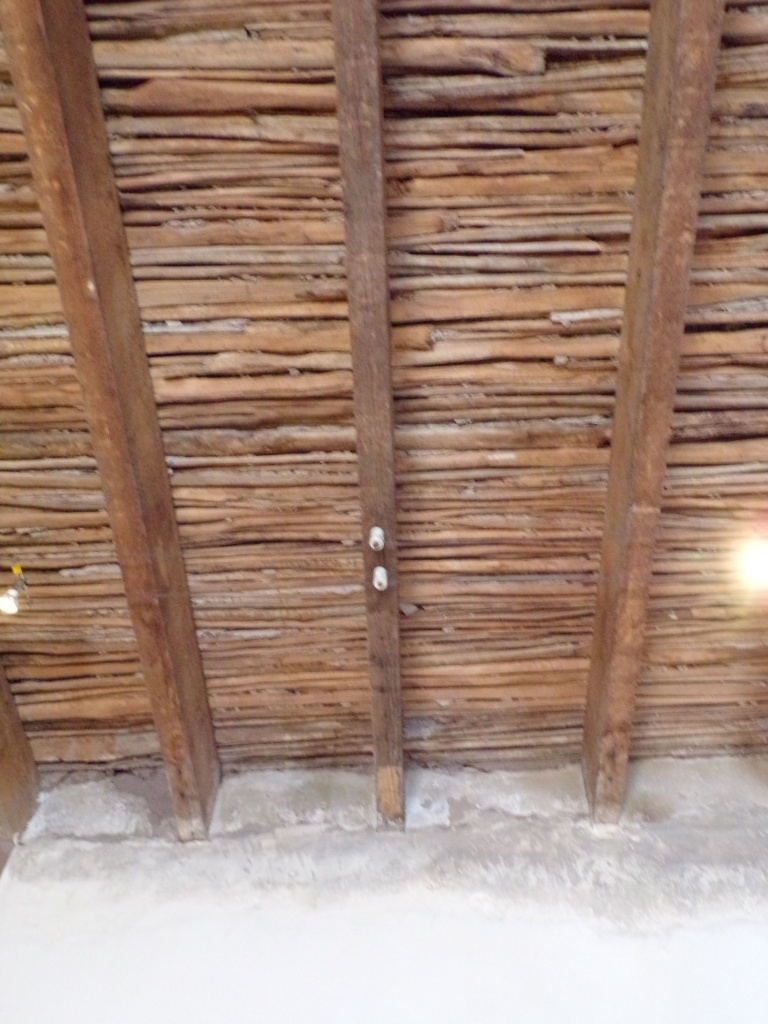 Roof made of saguaro spines