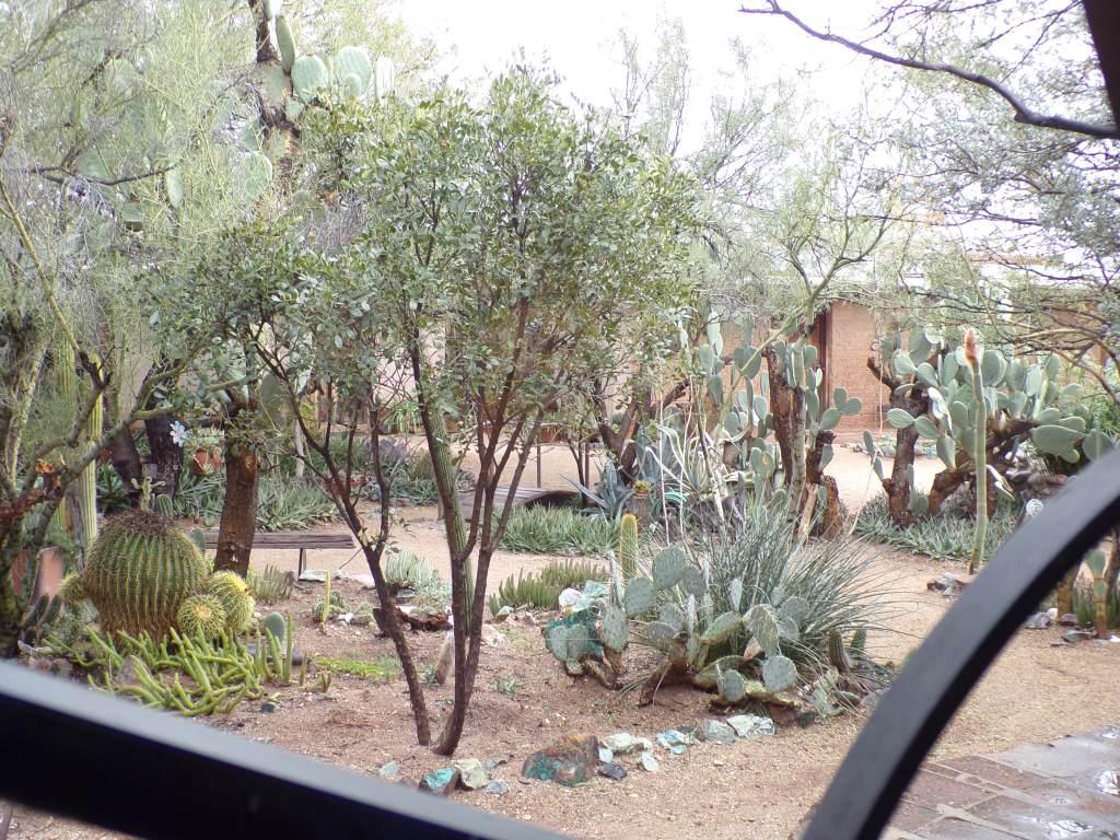 The Gallery garden