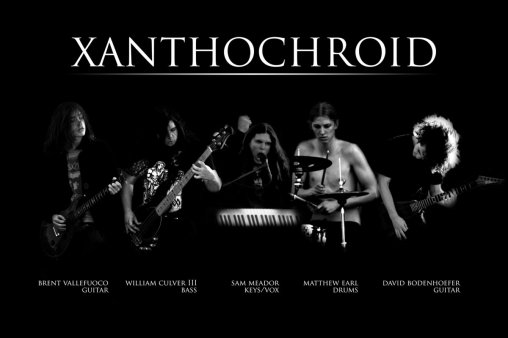 xanthochroid-band2