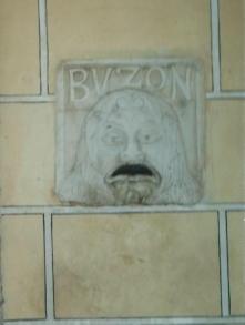 CubaBuzon