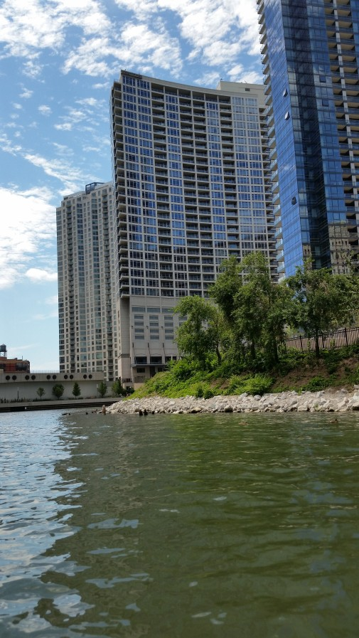 Residential high rises along the Chicago River
