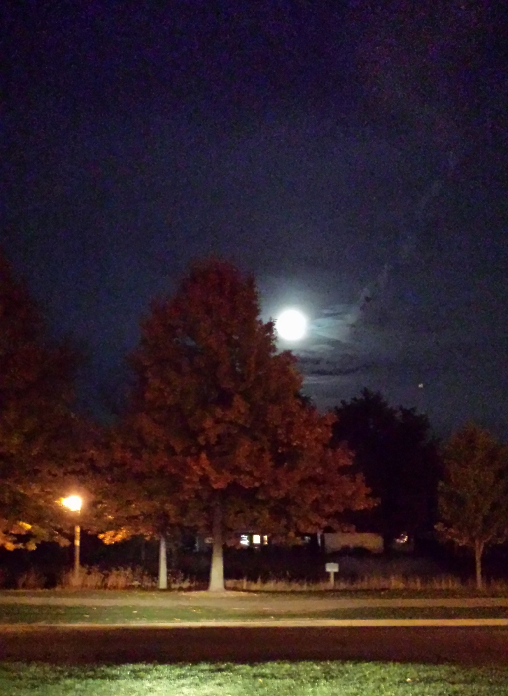 Full moon appears above a red maple tree - Prairie Lakes parking lot.