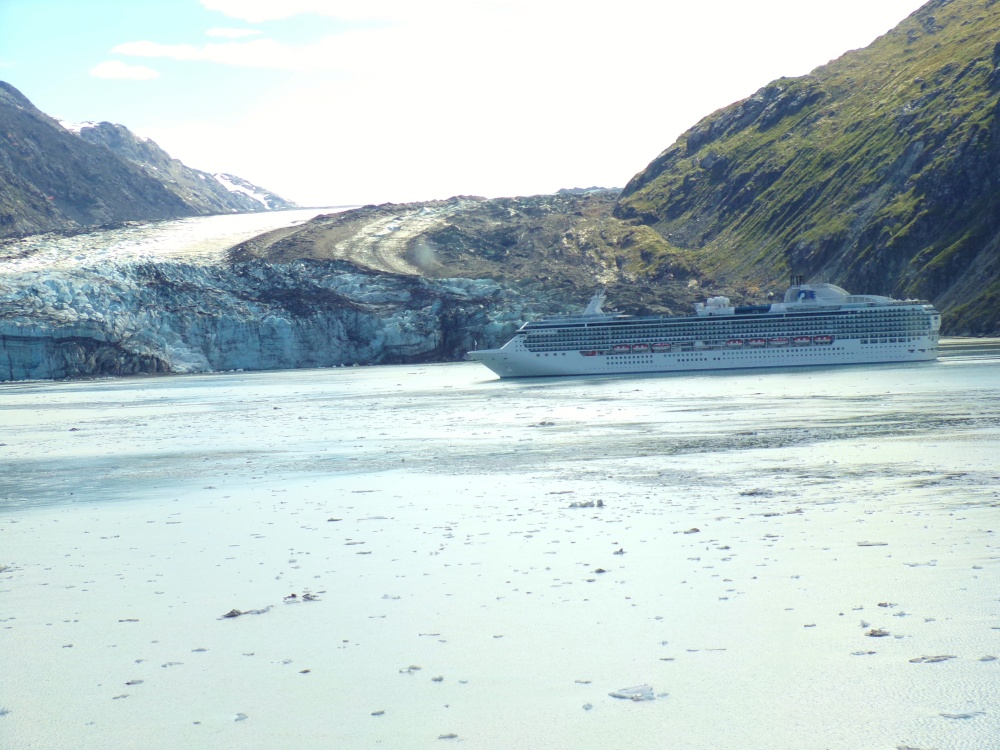 Cruise ship in front of Johns Hopkins Glacier