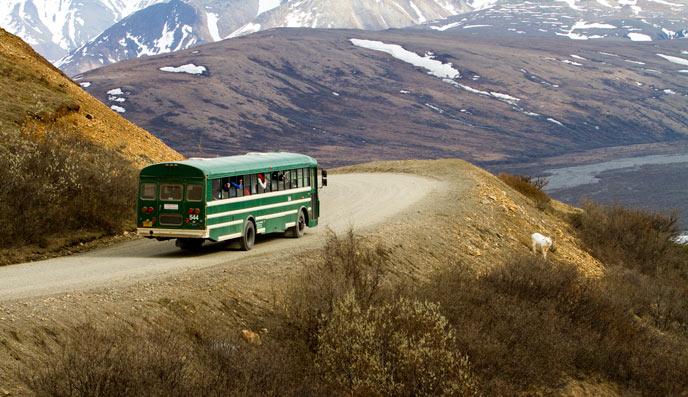 denali-npp-bus