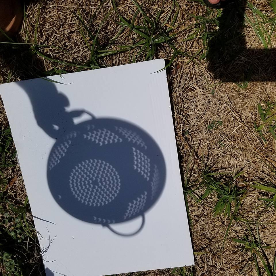 colander eclipse crescents-Amie R