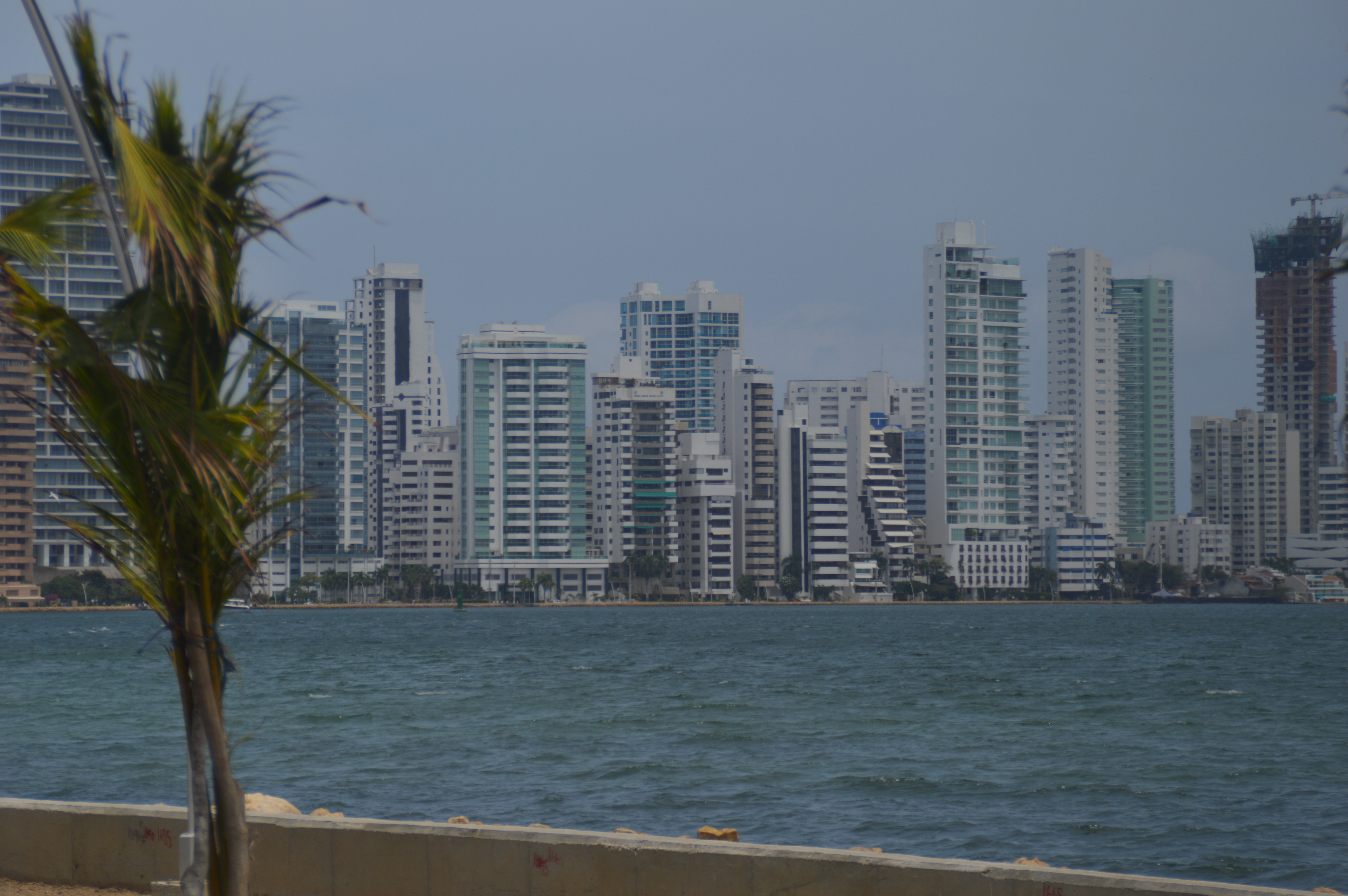 Panama Cruise C 216