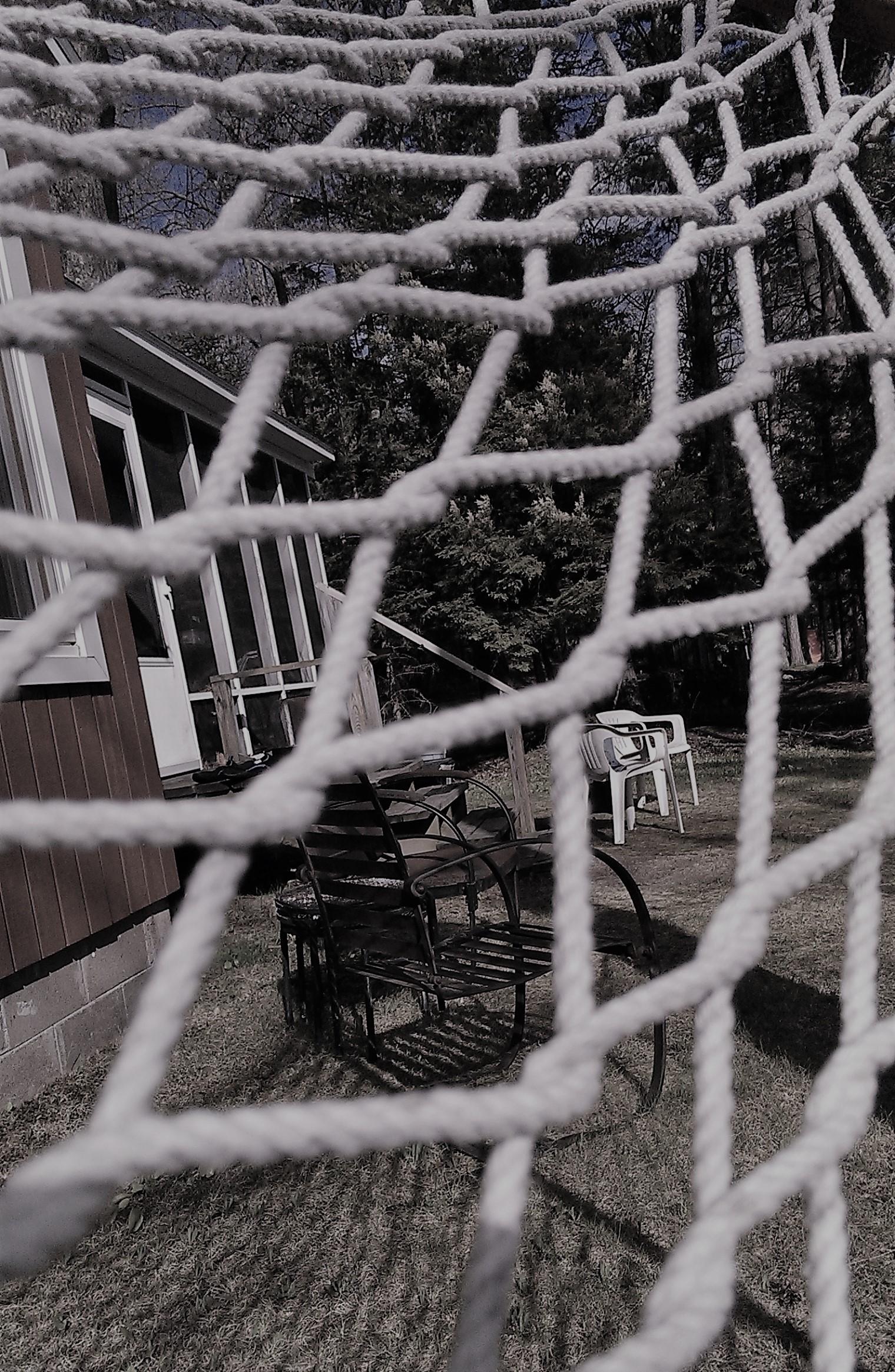 cottage through hammock