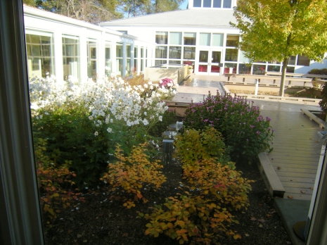 Danada House courtyard garden