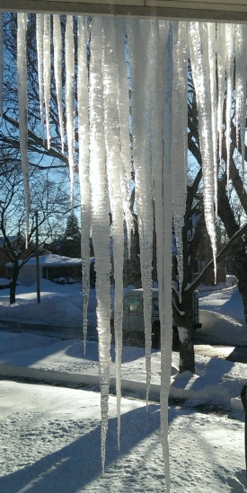 Icicles hang from the roof
