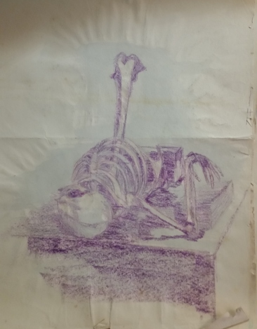 Skeleton on table (colored pencil with watercolor wash)