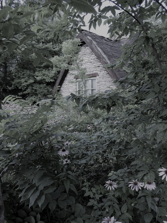 20170731_171518 (2)