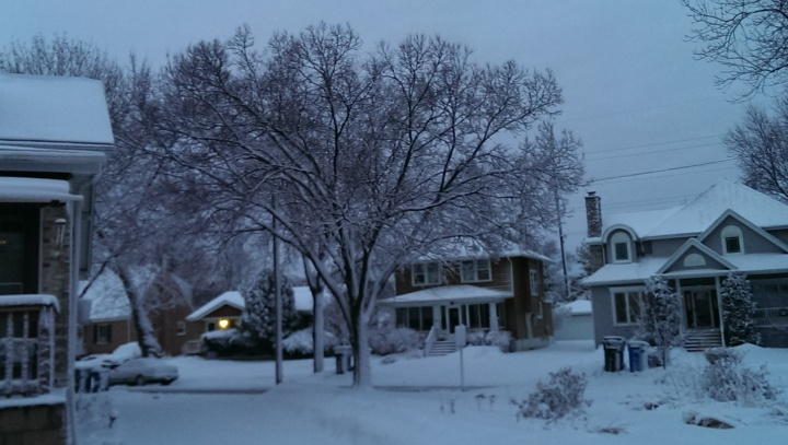 New fallen snow at sunrise - from front of the house