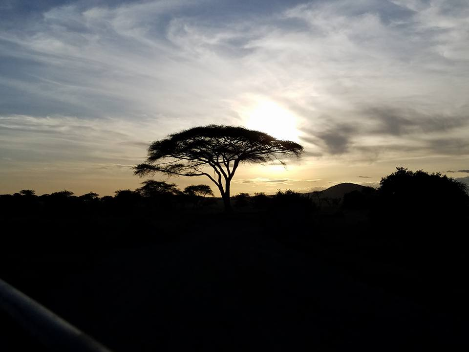 2-11 sunset over Serengeti
