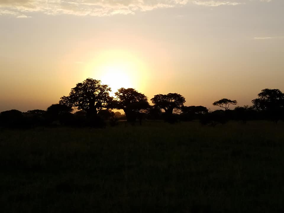 2-5 sunset over Tarangire
