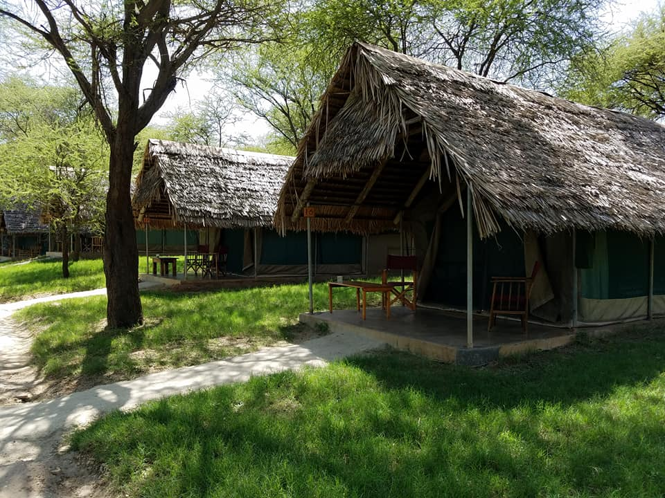 2-5 Tarangire Safari Lodge