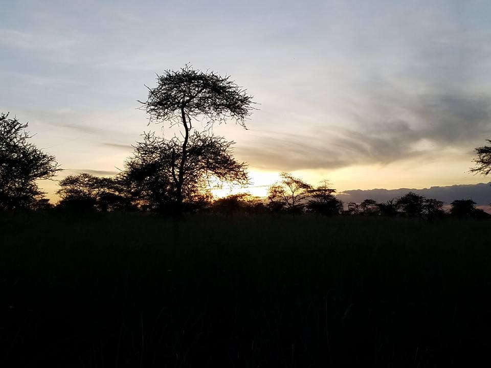 2-12 sunset behind our lodgings at Ang'ata Camp Serengeti