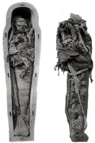 Ramses VI (49).jpg