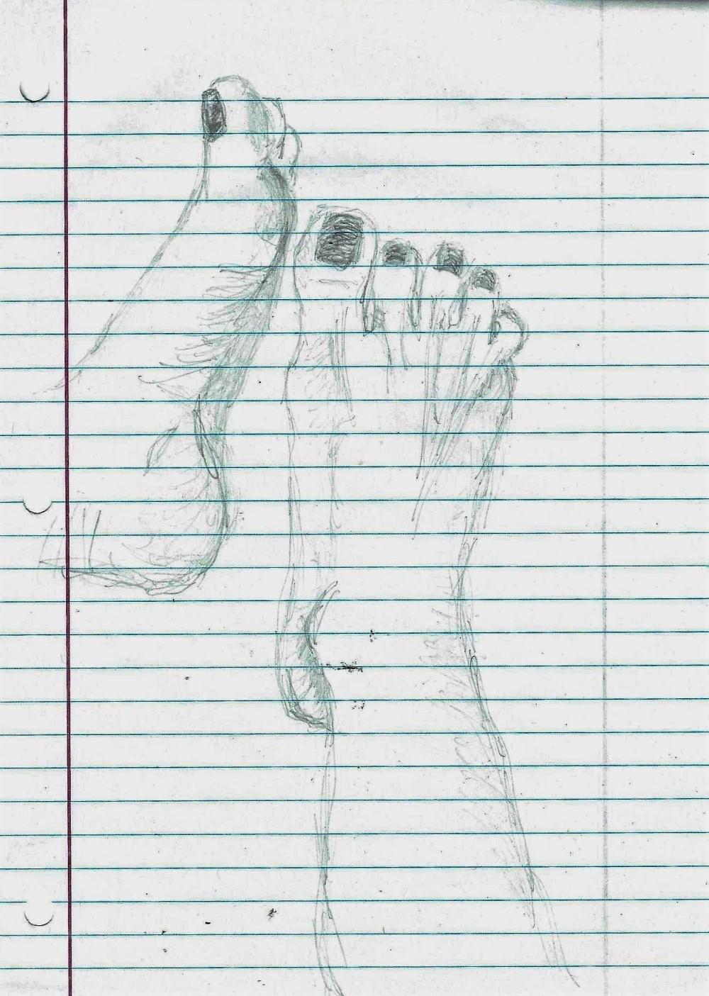 my feet 8-19-18.jpg