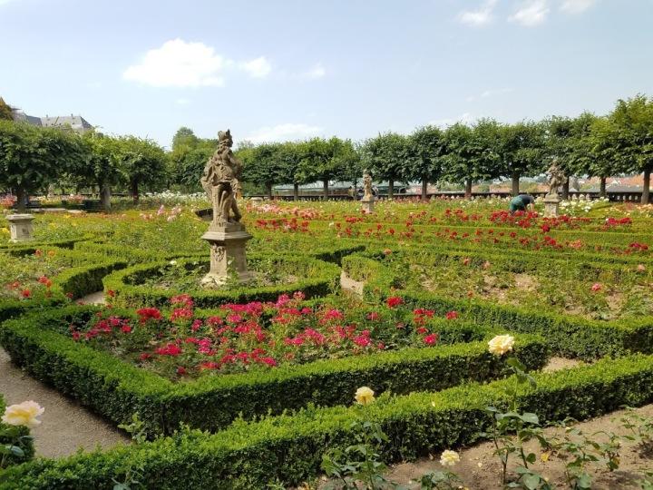 20190701_152021 Rose garden of Neue residenz.jpg