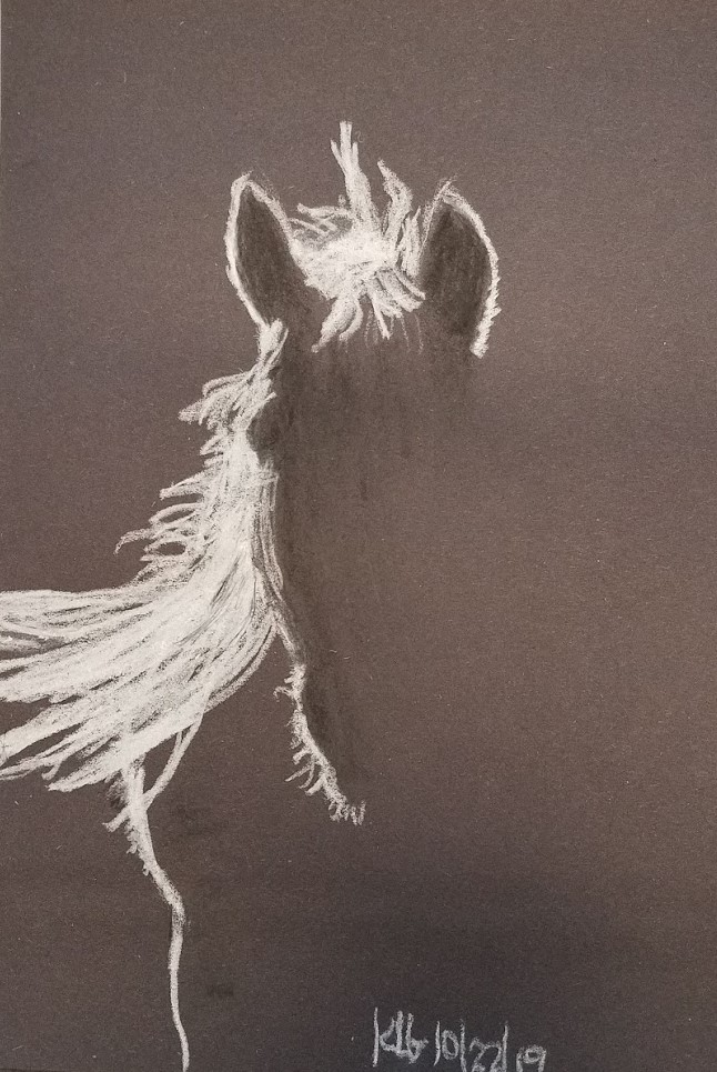 20191022_140918 Horse - white chalk & black pastel pencil on black construction paper.jpg