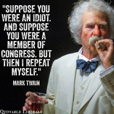 twain-idiot-congress