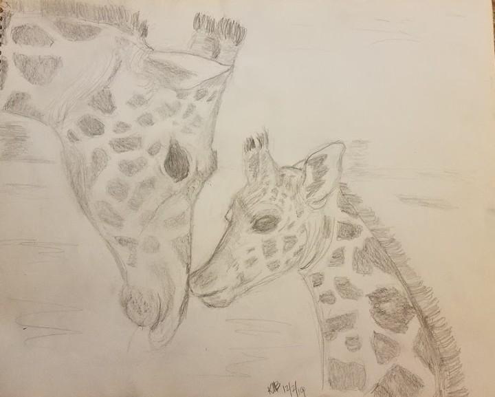 Giraffes 19-12-2 (pencil)