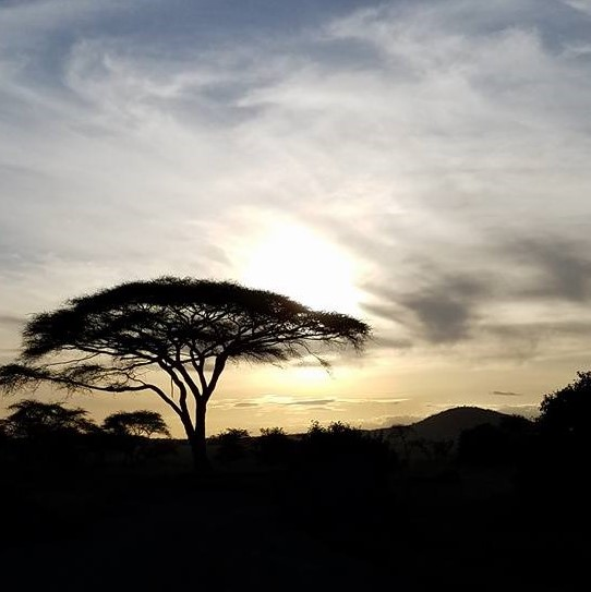 2-11 sunset over Serengeti (2)