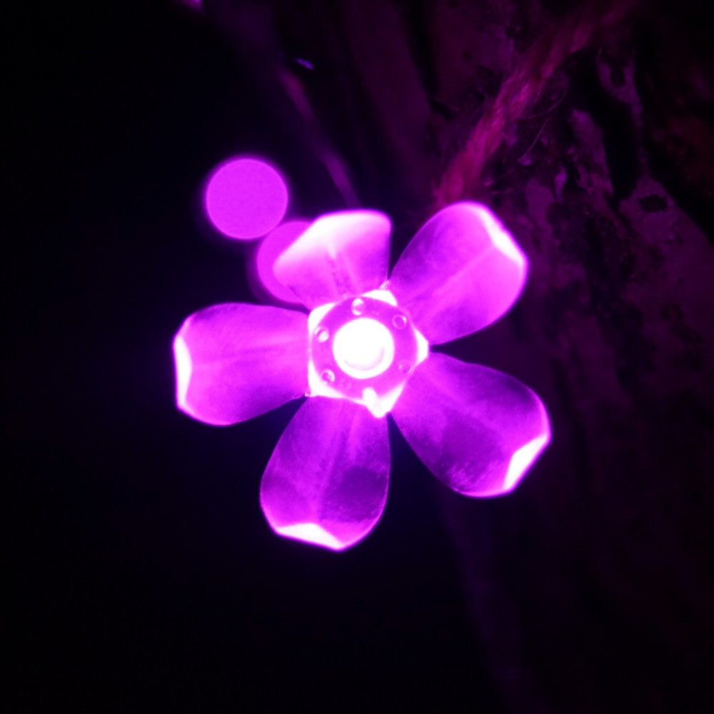 DSC02593 Lightscape.JPG