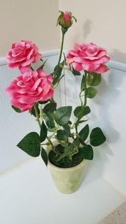 20200209_103916 fake roses - ladies restroom FCCDP