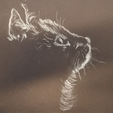Cat 19-10-22 (white chalk on black construction paper) (2)