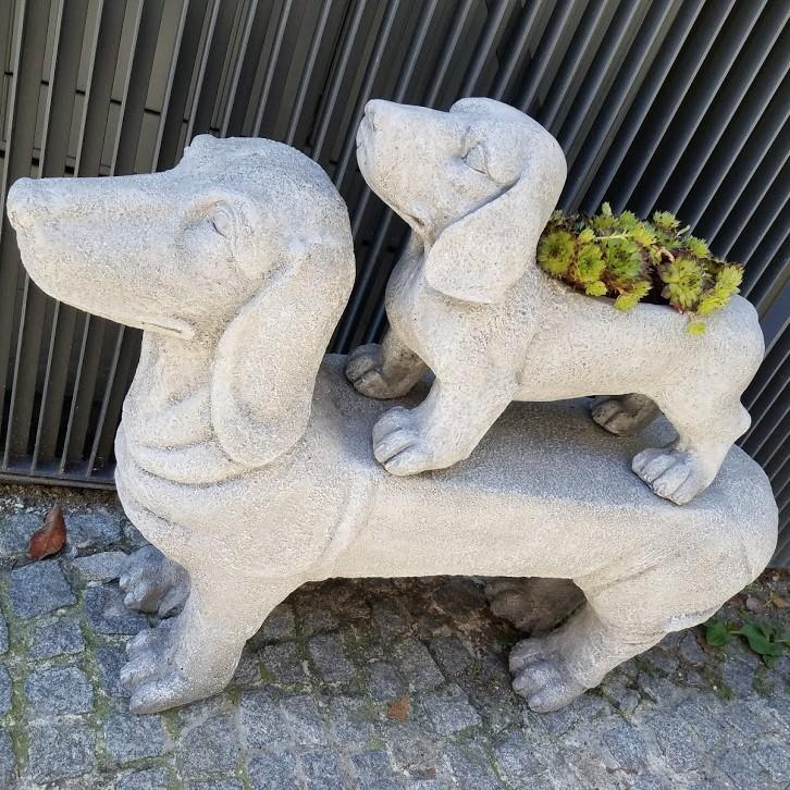 20190704_103124 Daschhund Museum, Passau - top dog