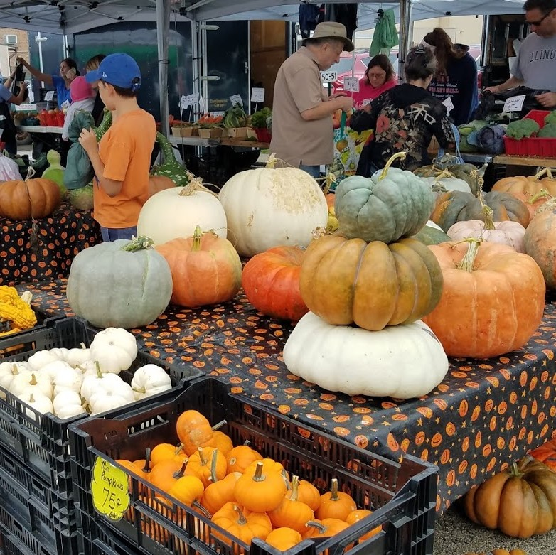 Park Ridge farmers' market, USA