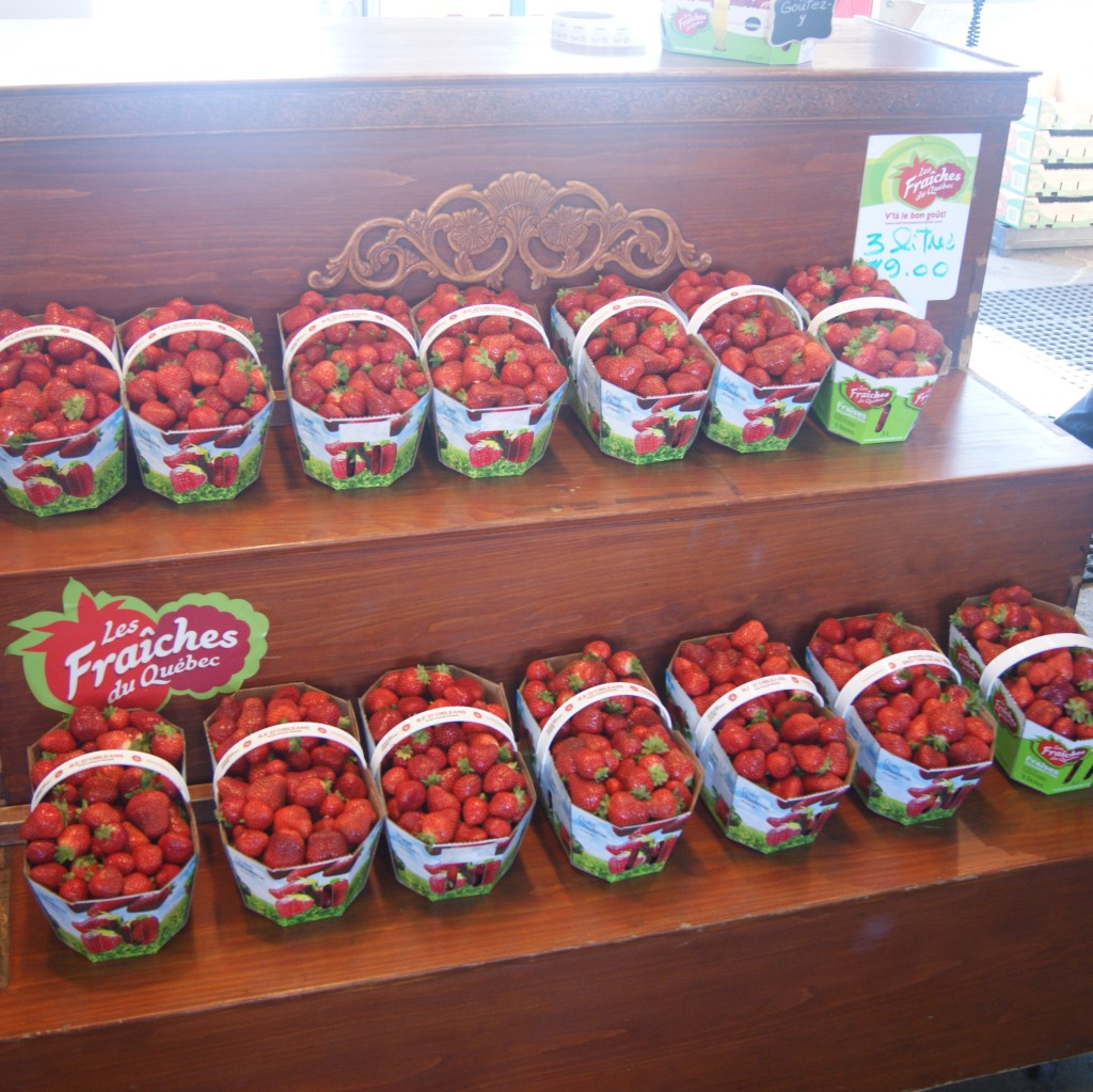 Fresh strawberries in October! Quebec